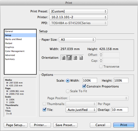 screen grab of second print dialog window