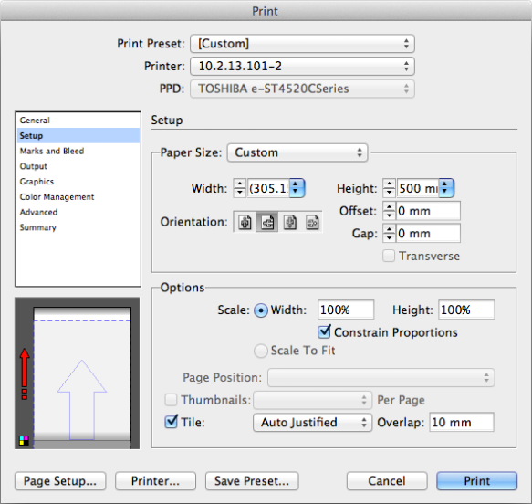 screen grab of third print dialog window
