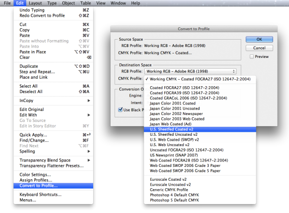 screen grab showing convert to profile menu and window with dropdown options
