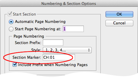 screen grab of numbering and section options