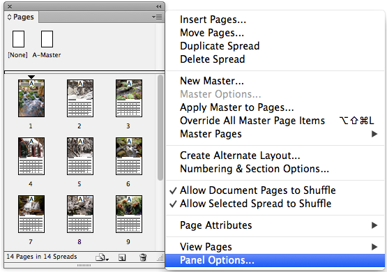 pages panel dropdown